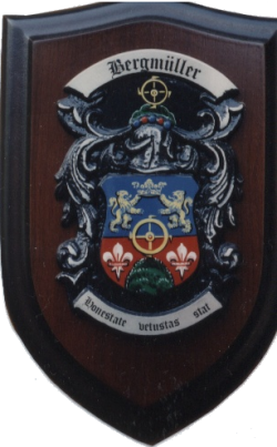 Wappen der Familie Bergmüller